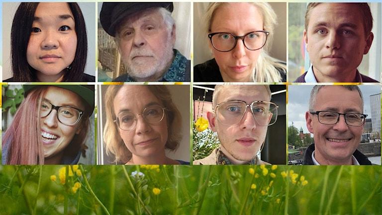 Kandidaterna till Lyssnarnas Sommarvärd
