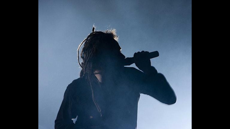 In Flames. Foto: Micke Grönberg/Sveriges Radio