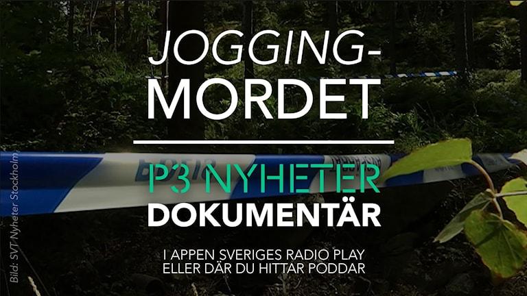 Bild: SVT Nyheter Stockholm