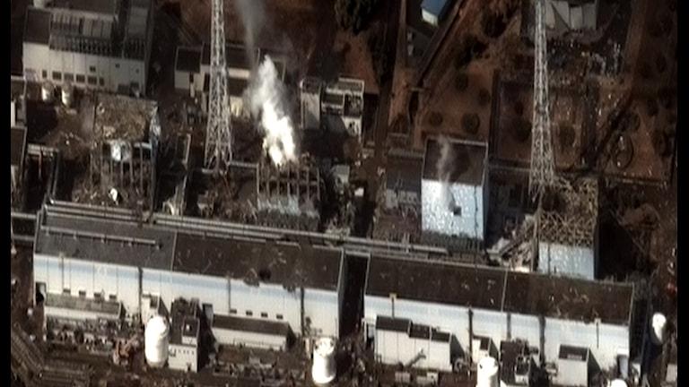Kylningen på tre av de sex reaktorerna slogs ut av tsunamin vilket ledde till vätgasexplosioner med radioaktiva utsläpp av framförallt cesium. Foto: Digital Globe/Wikimedia commons
