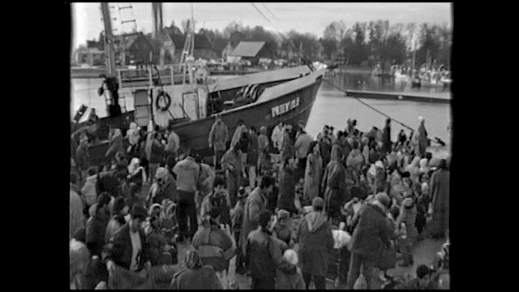 Priekule och flyktingarna i Slite hamn 1993. Foto: Privat