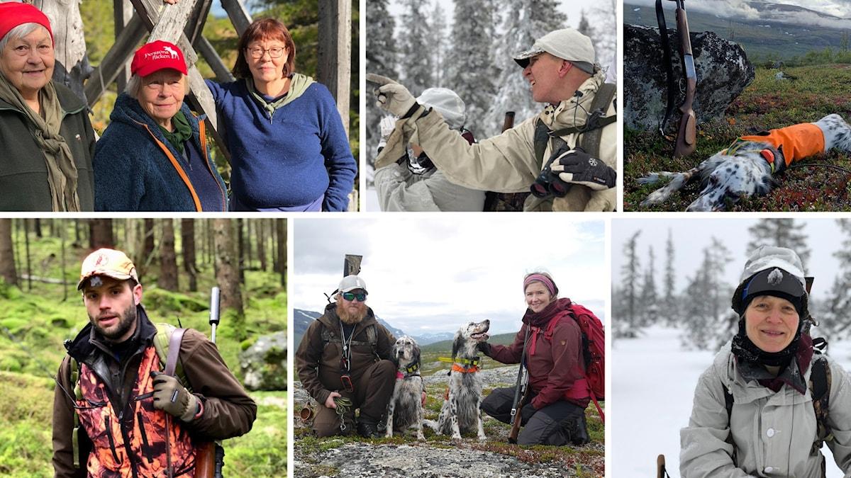 Bildcollage med fotografier på jägare och en fågelhund.