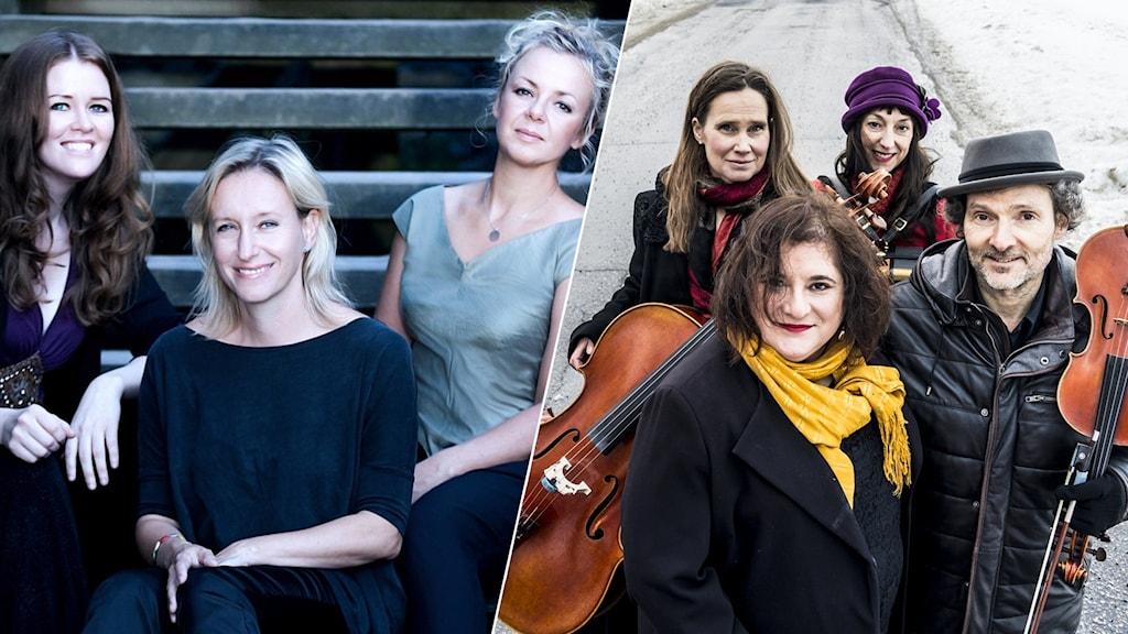 Trio Nova och Anne Kalmering och Stahlhammer Klezmer Classic. Foto: Emelie Kroon/Karl Gabor