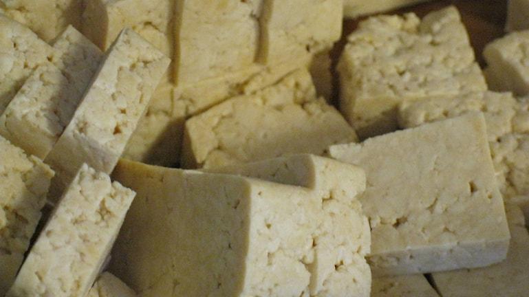 Tofu. Foto: Emma Öhrn/Sveriges Radio.