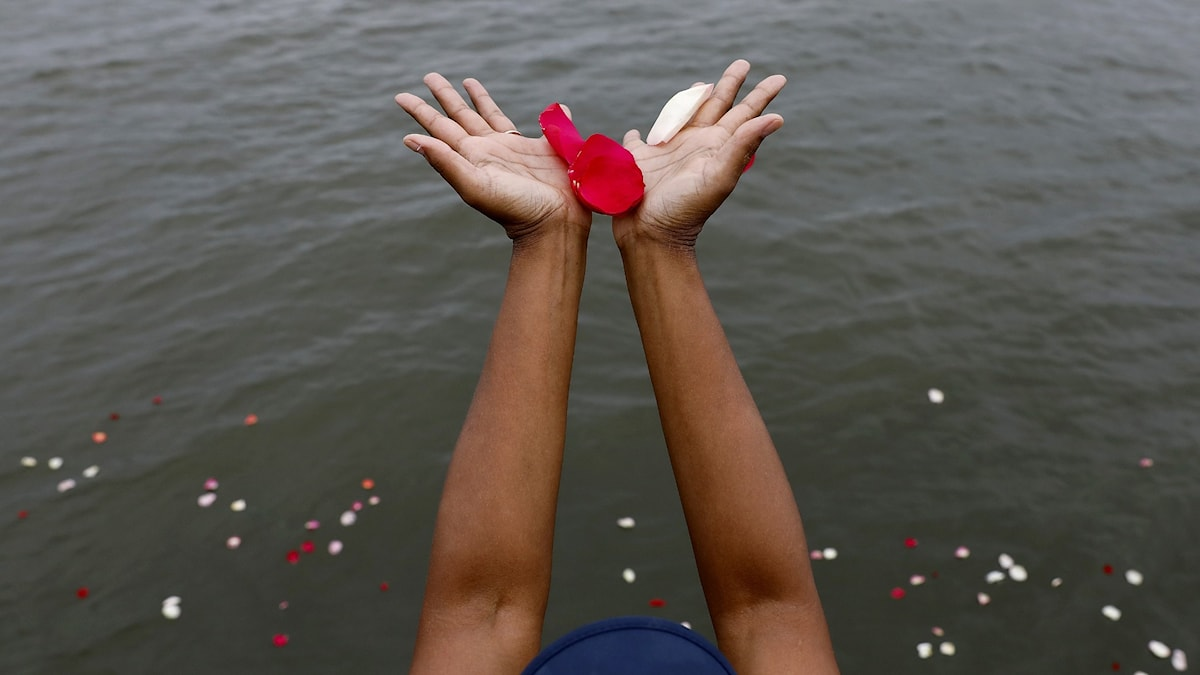 Blomblad släpps i havet vid Fort Monroe i USA.