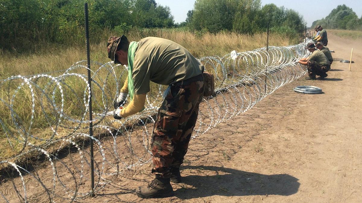 Taggtråd vid ungerska gränsen