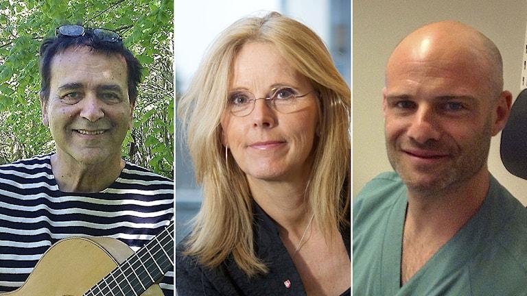 Björn Vickhoff, Ulrica Nilsson och David Révész. Foto: Birgitta Tollan/Petter Koubek/Birgitta Tollan. Montage: Sveriges Radio.