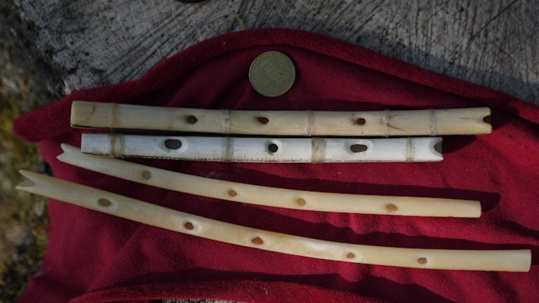Bild på fljötar i ben, några av dem hittade i Hohle Fels-grottan