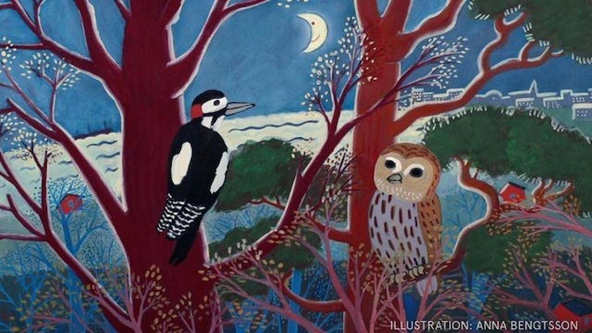 Högt uppe i två träd sitter en Hackspett och en Uggla. Månen lyser i bakgrunden.