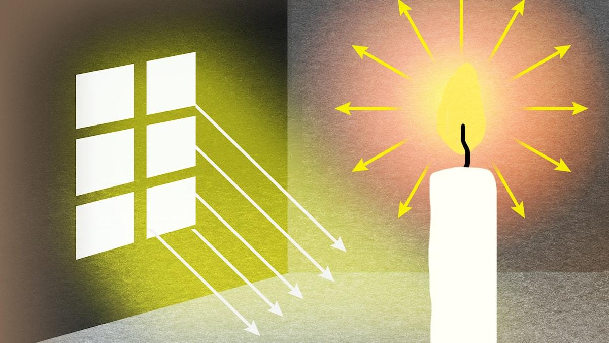 Vem vet vad?: Ljus, del 1 Illustration: Maria Beskow