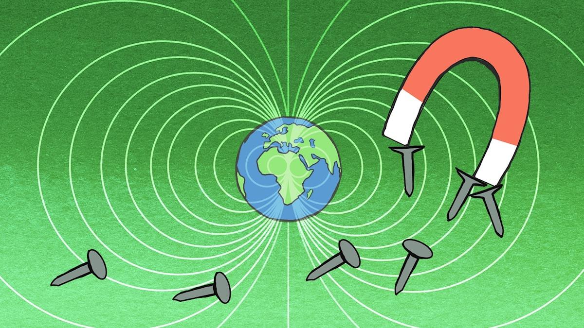 Vem vet vad?: Magnetism Illustration: Maria Beskow