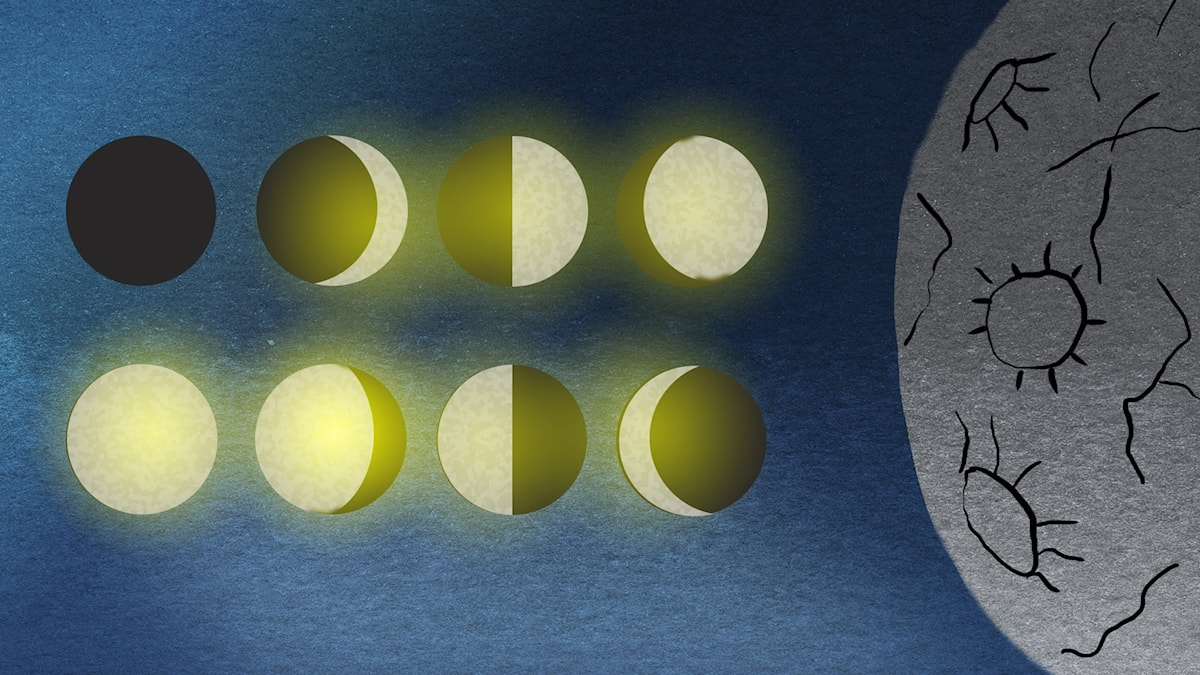 Vem vet vad?: Månen Illustration: Maria Beskow