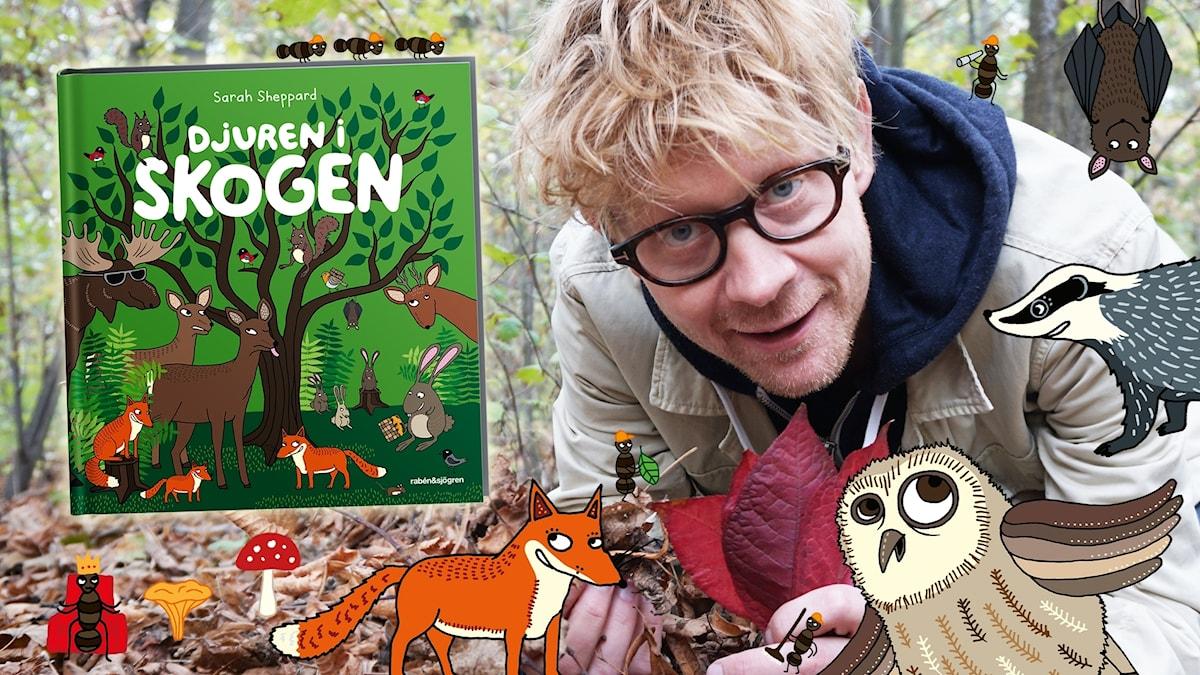 """Anders Johansson läser om hösten ur boken """"Djuren i skogen"""". Illustrationer: Sarah Sheppard Foto: Victor Holm Lagerqvist/SR"""