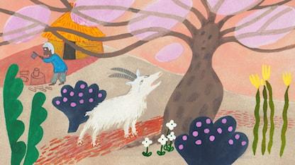 Sagor från Senegal: Geten och det magiska trädet SR.Web.CssMapping.CssClass