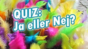 Quiz: Ja eller Nej?