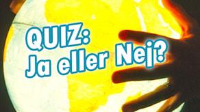 QUIZ: Ja eller nej? Från andra semifinalen 2016 av Vi i femman.