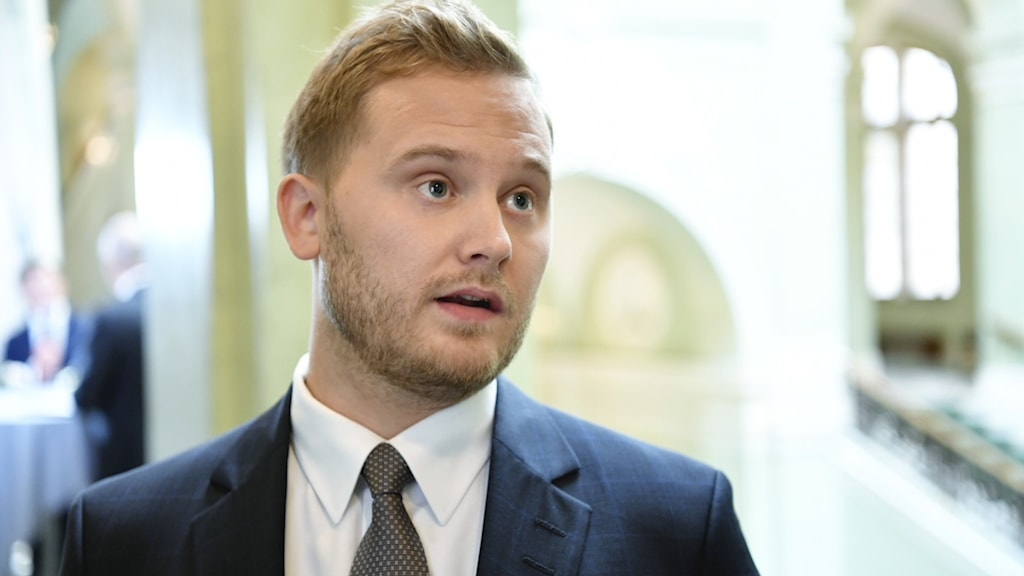 Sverigedemokraternas gruppledare Henrik Vinge.