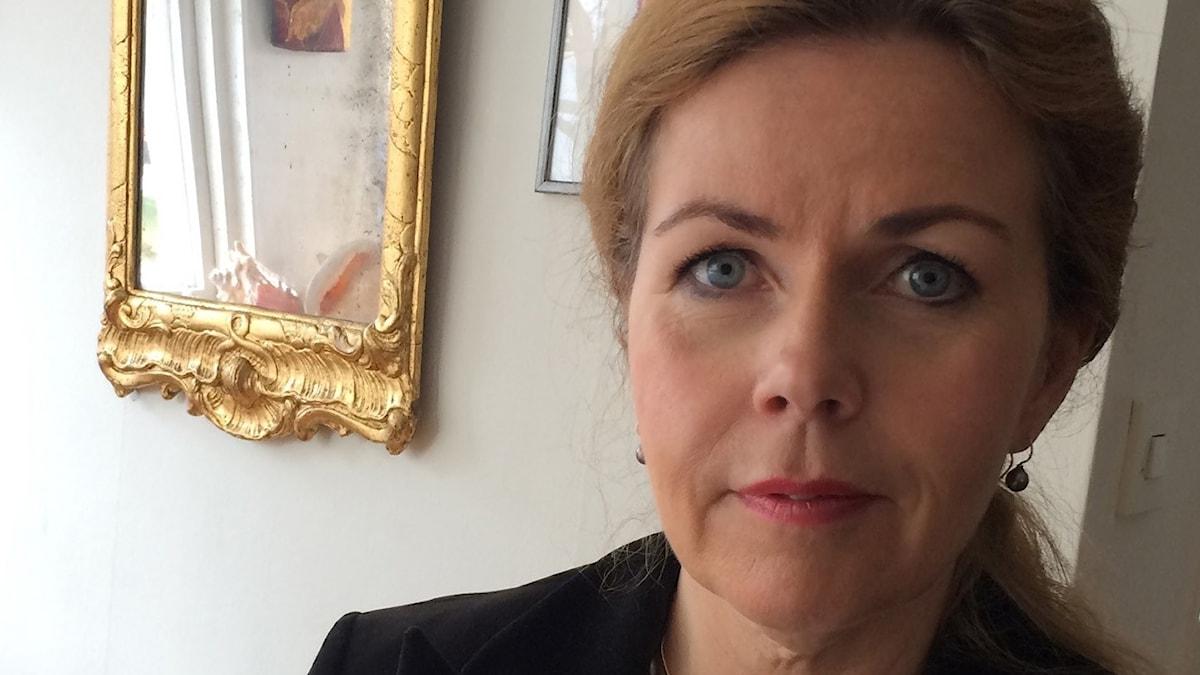 Cecilia Wikström, Liberalerna