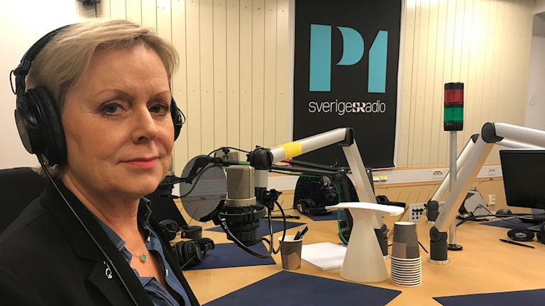 Ekots lördagsintervju med Lena Ag, Jämställdhetsmyndigheten