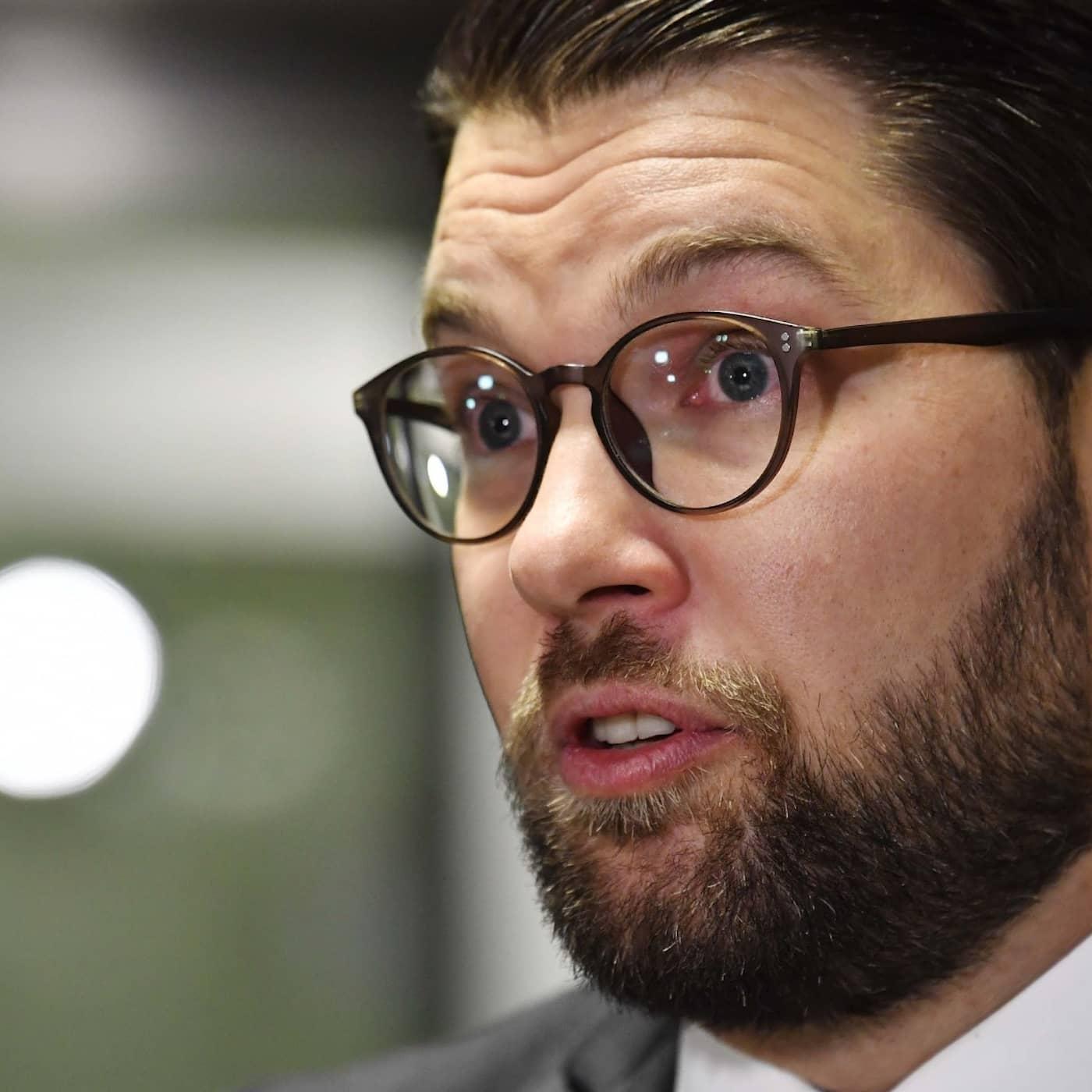 Hur mycket makt kan SD få efter valet, Jimmie Åkesson?