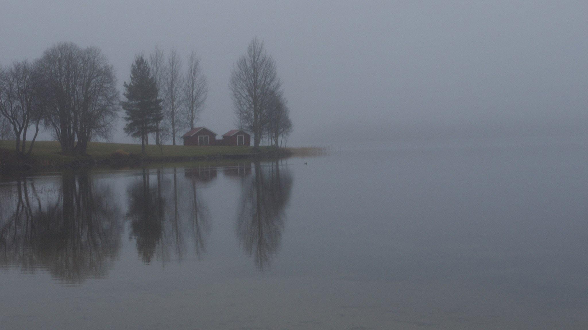Tavelsjön i den norrländska byn Tavelsö där det sägs att både hundar och människor omkommit på grund av monstret. Foto: Anette Olofsson/SR
