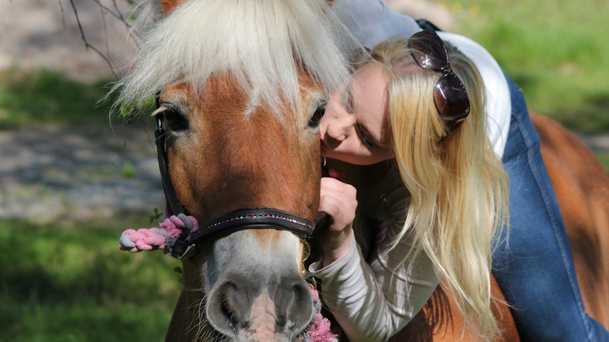 Flicka som sitter på häst pussar hästens kind