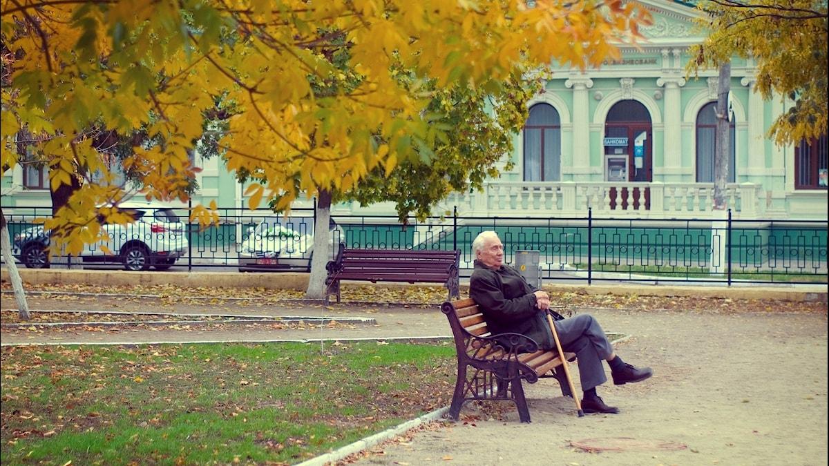 En äldre man med käpp sitter ensam på en bänk i en park med gula höstlöv på träden.