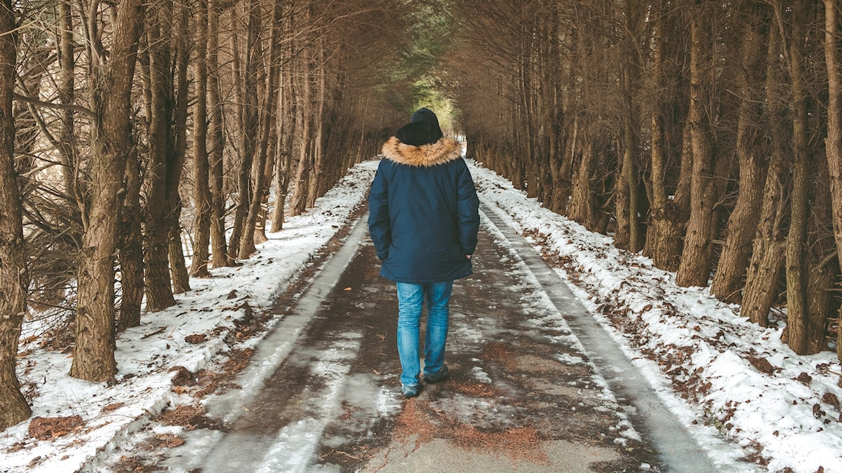 En person går genom en allé av vissna träd, med ryggen mot kameran. Det är snö på marken.