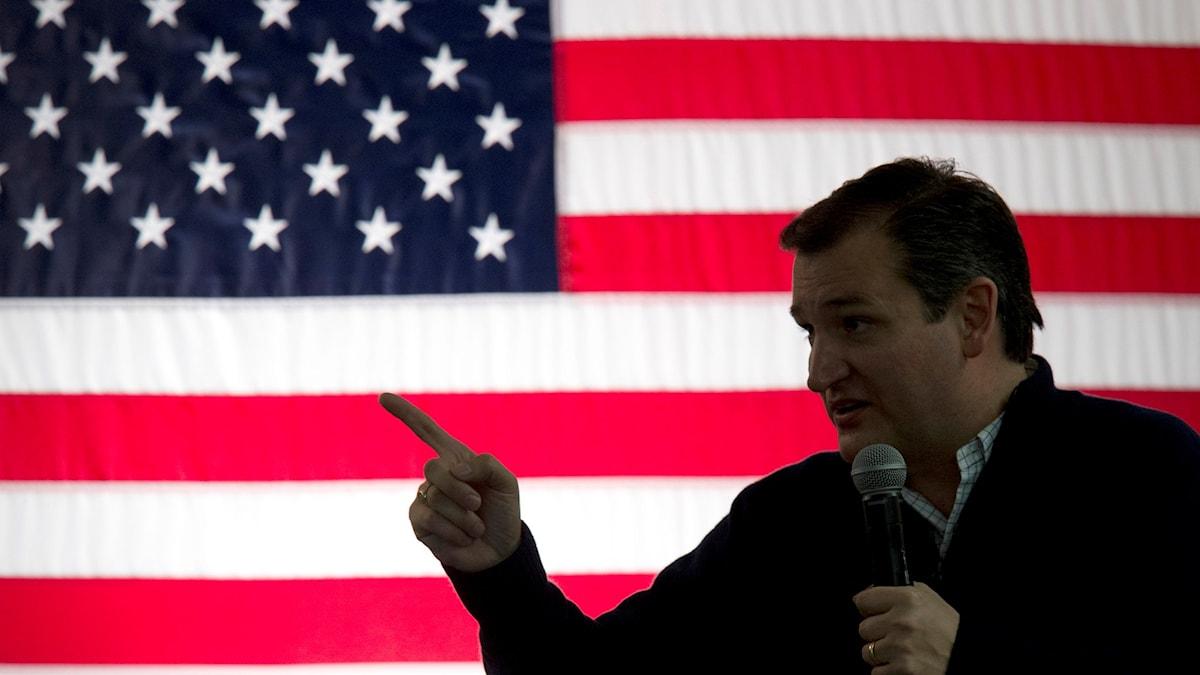 Ted Cruz är en av republikanernas presidentkandidater. Mary Altaffer/TT