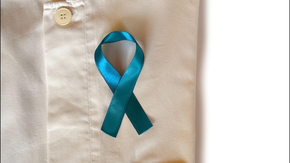 blue-ribbon-3778242_1920