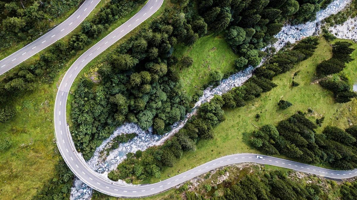 skogsväg, slingrig väg, skog, väg, drönarbild