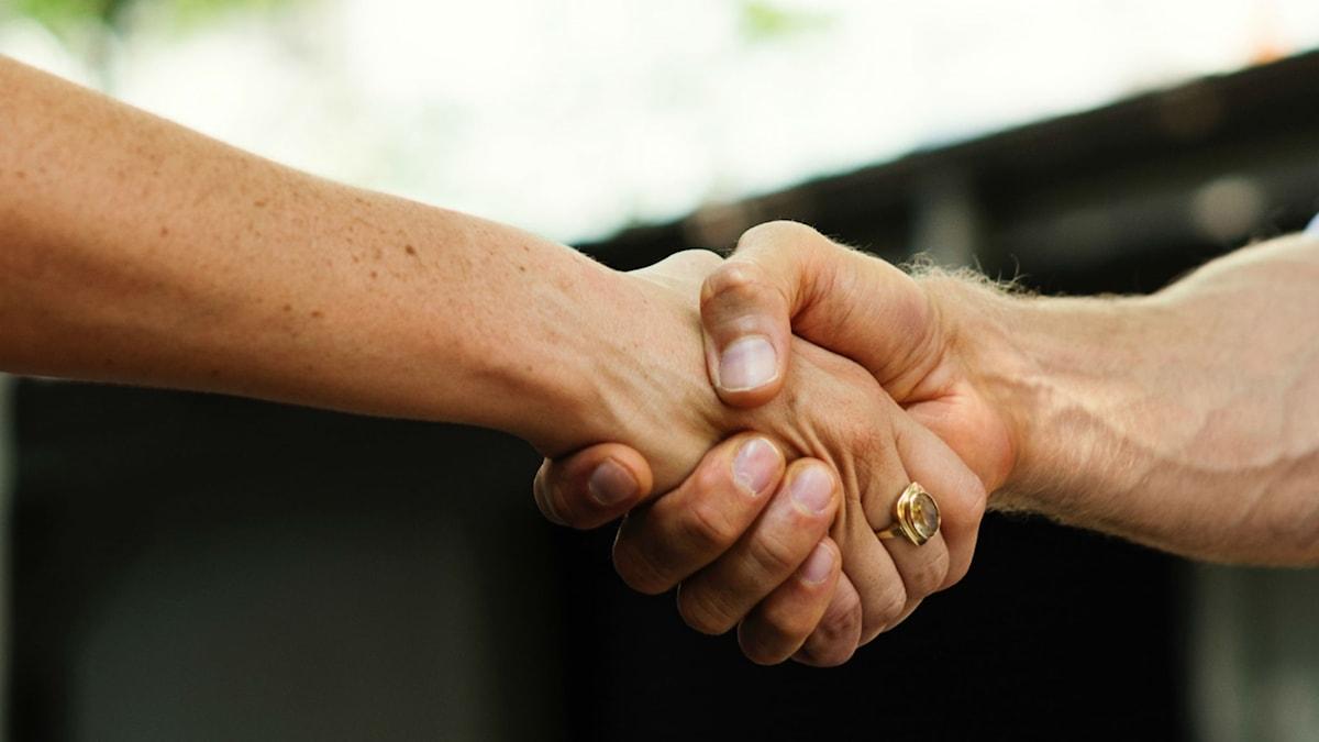 Två personer skakar hand.