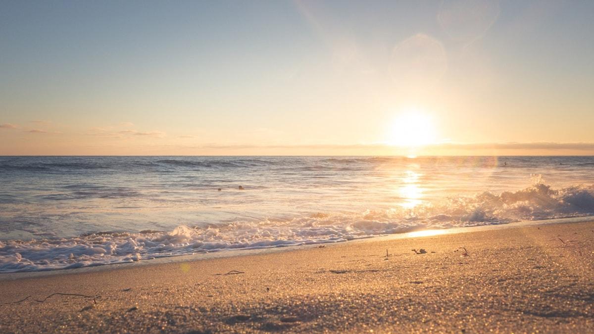 Hav och strand och solnedgång.