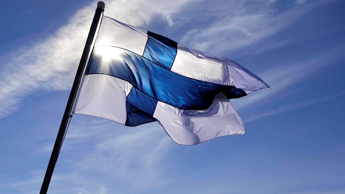 Suomen lippu auringossa