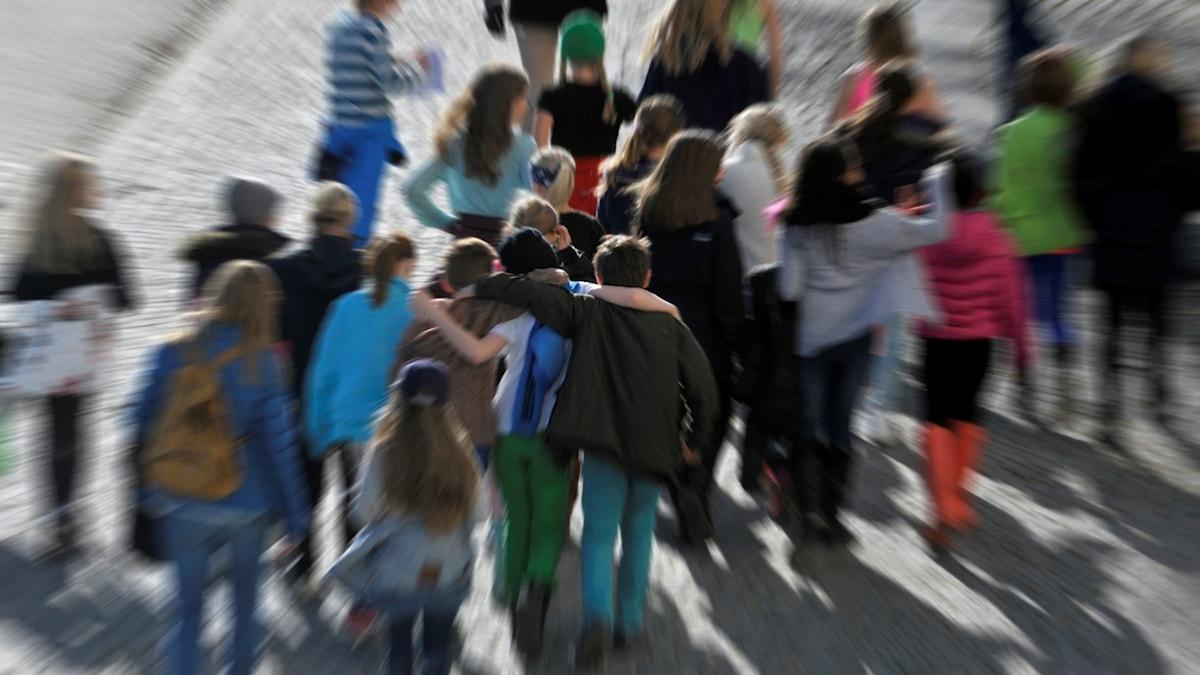 grupp skolklass promenad