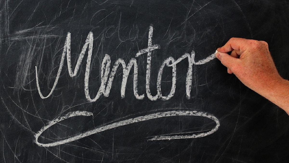 """Ordet """"mentor"""" skrivet på en svart tavla."""