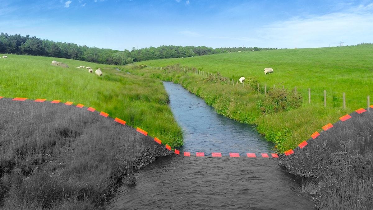 Ett gräsbevuxet landskap med en pålagd röd gränslinje. Hitom gränslinjen är bilden svartvit.
