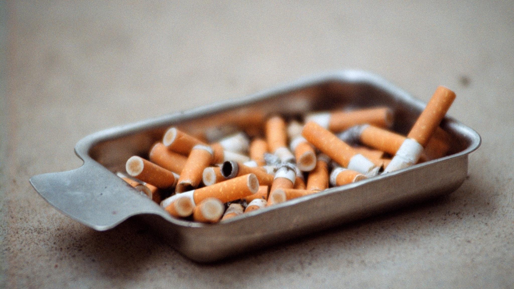 Cigarettfimpar i ett överfyllt askfat.