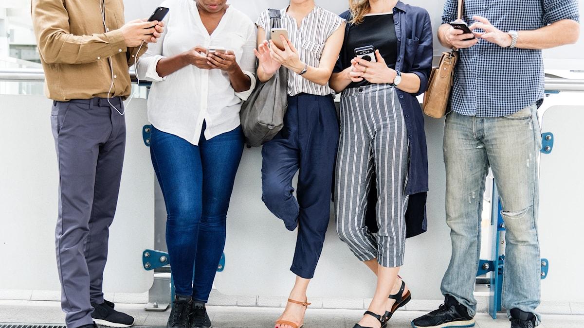 Fem personer står mot en vägg och alla pillar på sin telefon.