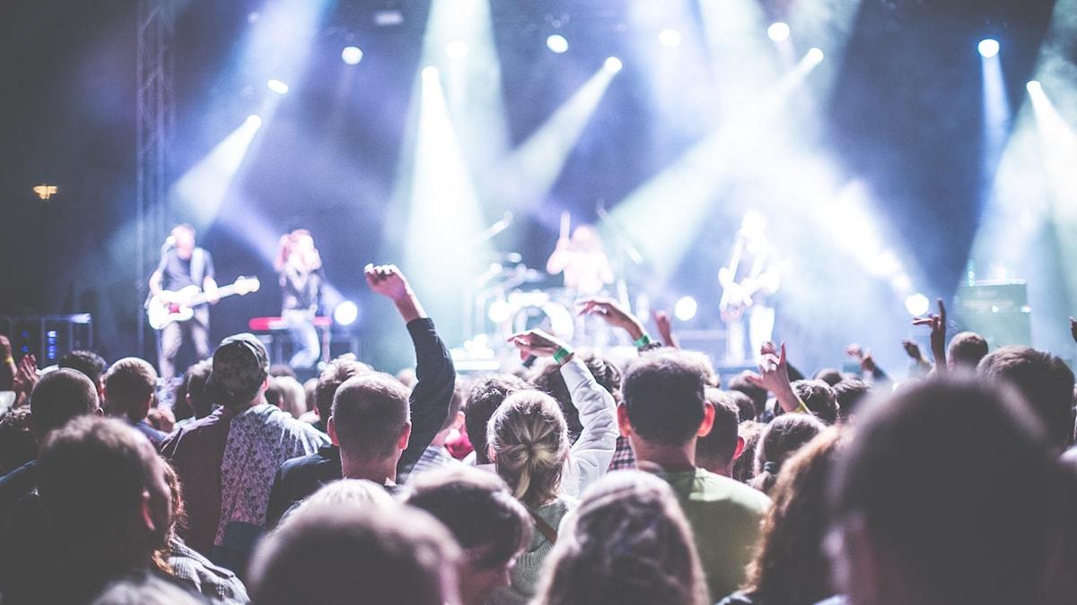 Publikhav på konsert