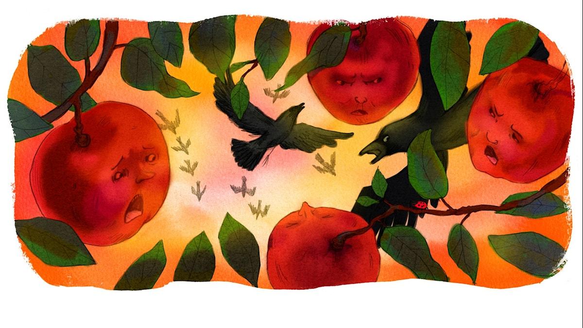 Magiska Skrinet: Äpplenas krig, illustration: Ingrid Flygare