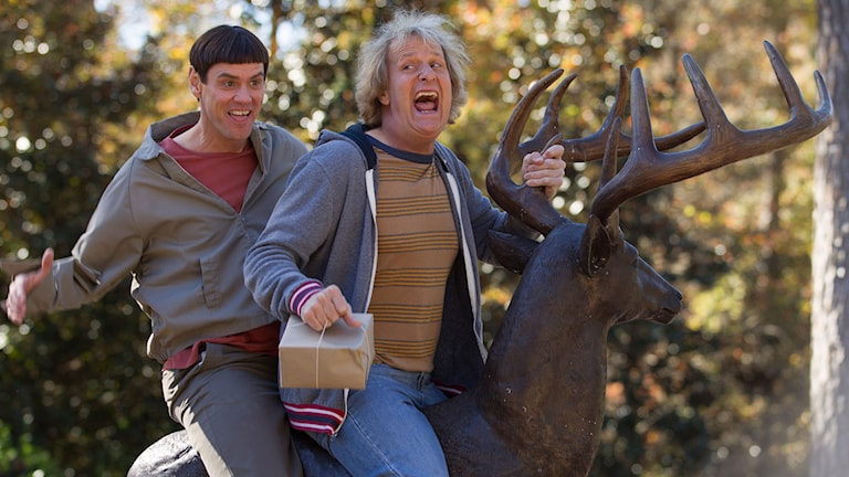 Jim Carrey och Jeff Daniels i Dum och Dummare 2. Foto: Noble Entertainment.