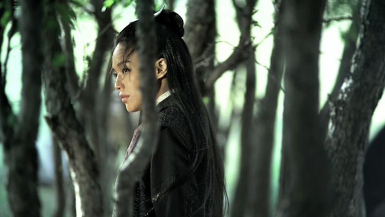 Qi Shu i The Assassin. Foto: Njutafilms.