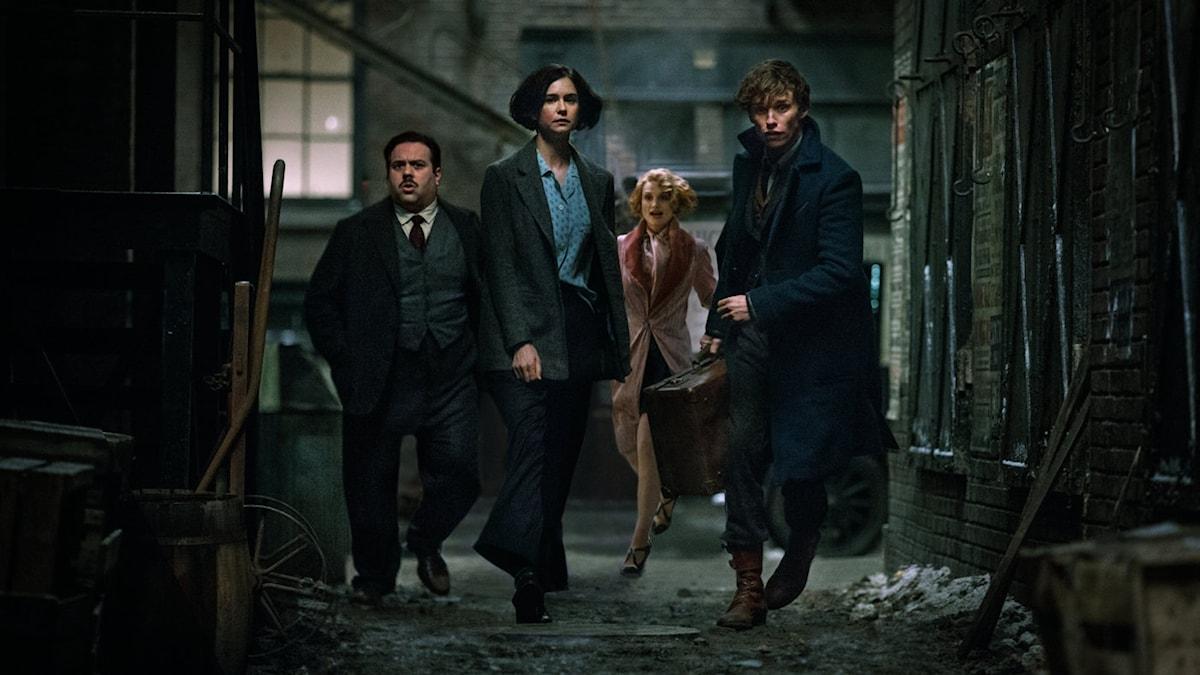 Dan Fogler, Katherine Waterston, Alison Sudol och Eddie Redmayne i Fantastiska vidunder och var man hittar dem. Foto: Fox Movies.