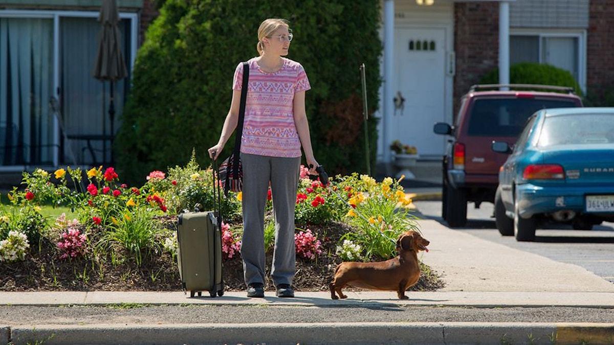 Greta Gerwig med tax i Wiener Dog. Foto: NonStop Entertainment.