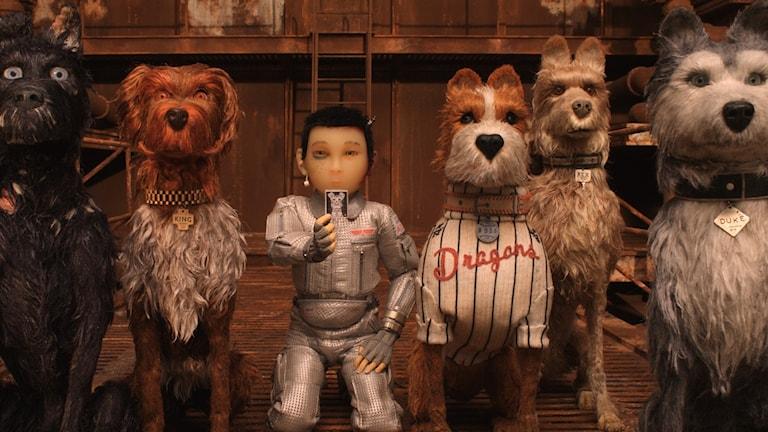 Atari och hundarna som leder upproret i Isle of the dogs. Foto: Fox movie.