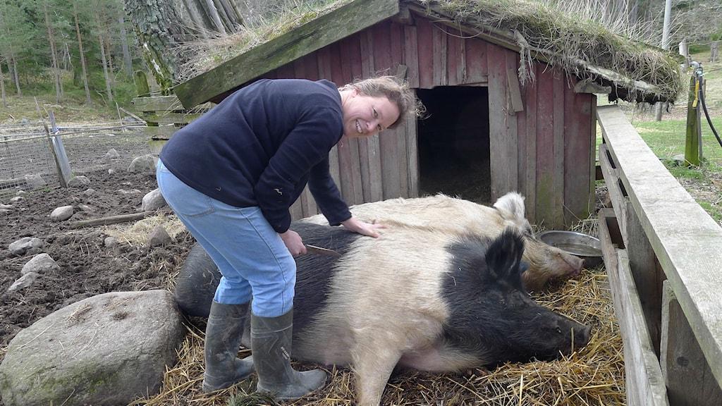 Pella Thiel med två slappande grisar, Doris och Bettan.