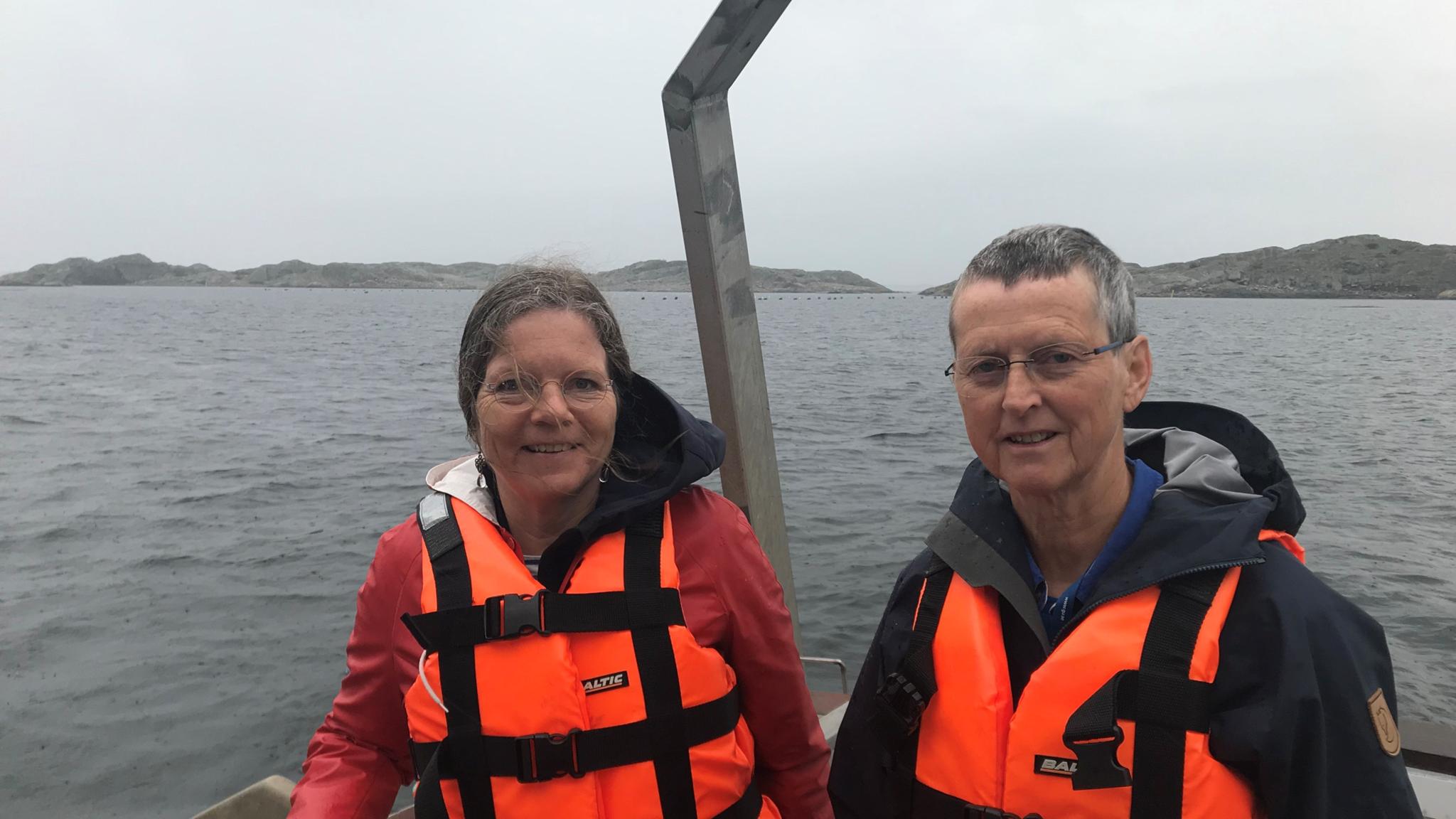 Bland sjögurkor och koraller i Sveriges enda marina nationalpark