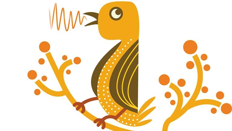 P2 fågeln
