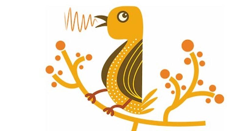 P2-fågel